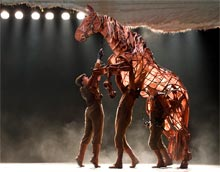 War Horse Joey comes home
